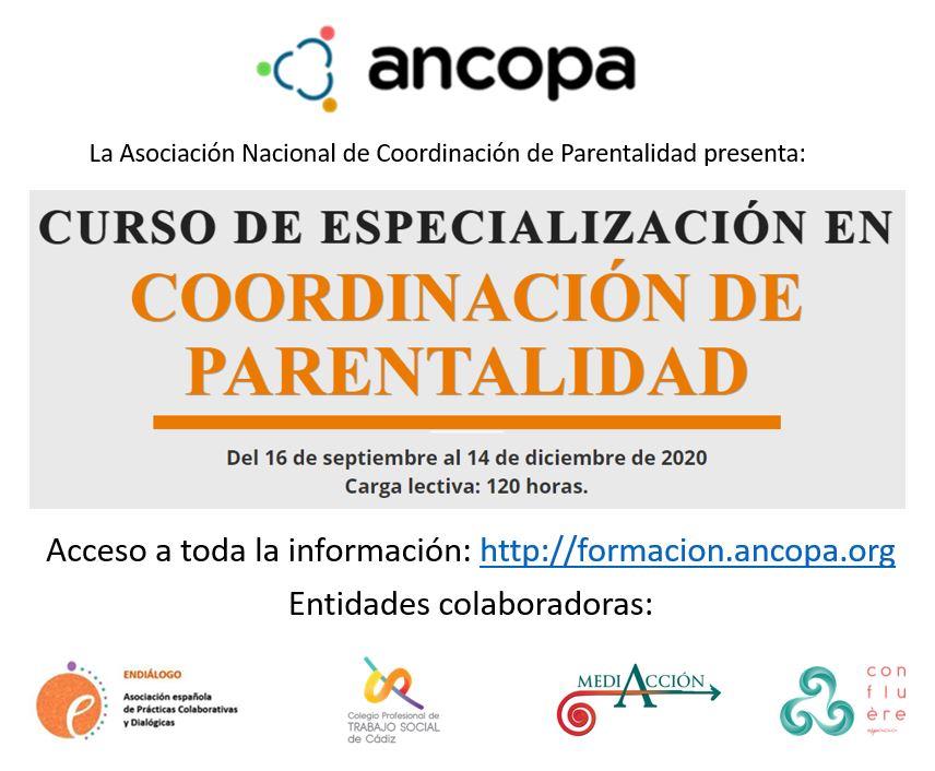 Curso on line de especialización en Coordinación de Parentalidad